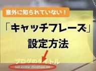 ワードプレスブログ【キャッチフレーズ設定・表示】は空白がオススメ!安心!